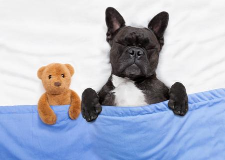 舔狗的英语单词怎么说